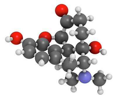Oxymorphone Opioid Analgesic Drug Poster