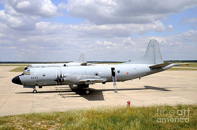 P-3m Orion Of The Spanish Air Force Poster by Riccardo Niccoli