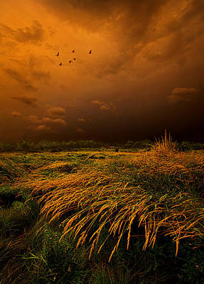 Passage Poster by Phil Koch