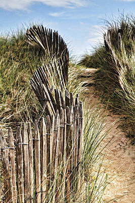 Path Through Dunes Poster by Colin and Linda McKie