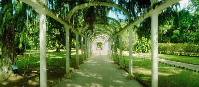 Pathway In A Botanical Garden, Jardim Poster by Panoramic Images