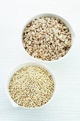Pearl Barley And Quinoa Seeds Poster by Gustoimages