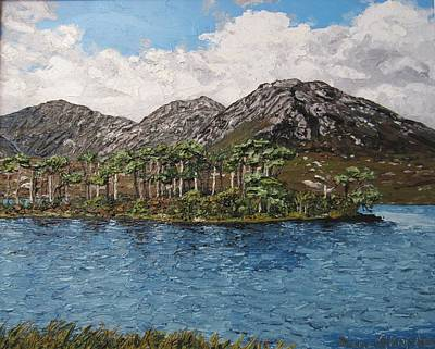 Pine Island Derryclare Lough Connemara Ireland Poster by Diana Shephard