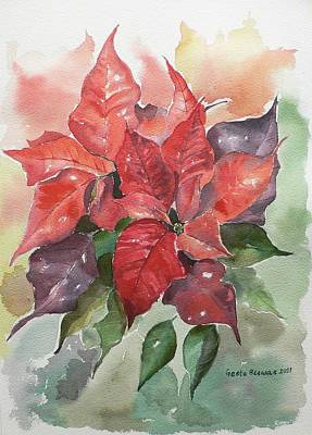 Poinsettias Poster by Geeta Biswas