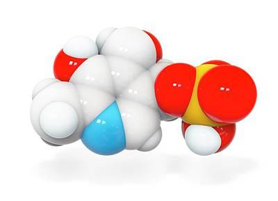 Pyridoxal Phosphate Molecule Poster by Ramon Andrade 3dciencia