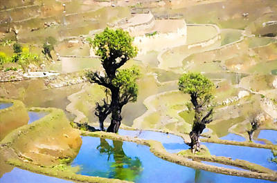 Rice Terraces Of Yuanyang Poster