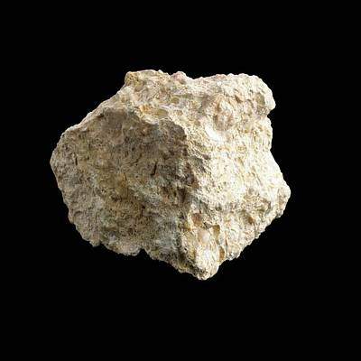 Sample Of Limestone Poster by Science Photo Library