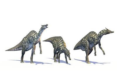 Saurolophus Poster by Roger Harris