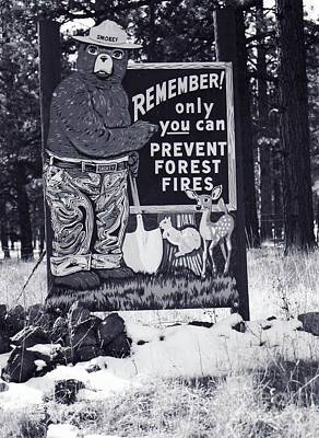 Poster featuring the photograph Smokey The Bear by Juls Adams