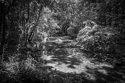 Soldiers Creek Seminole County Florida  Bw Poster