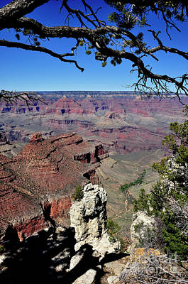 South Rim Of The Grand Canyon Poster