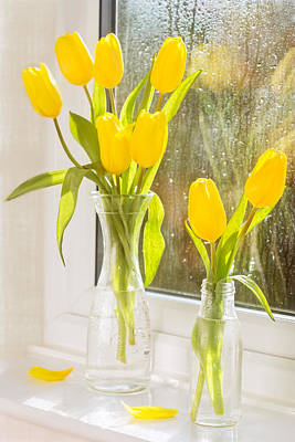 Spring Tulips Poster by Amanda Elwell