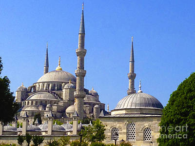 Sultanahmet Camii Blue Mosque Istanbul Turkey Poster by Ralph A  Ledergerber-Photography