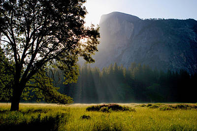 Summer Sunrise In Yosemite Valley Poster