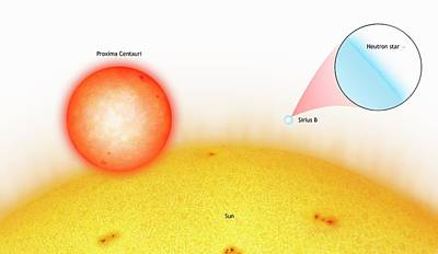 Sun Compared To Small Stars Poster
