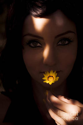 Sun Flower Poster by Jorgo Photography - Wall Art Gallery