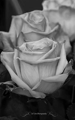 Tea Roses In Black And White Poster by Jeanette C Landstrom
