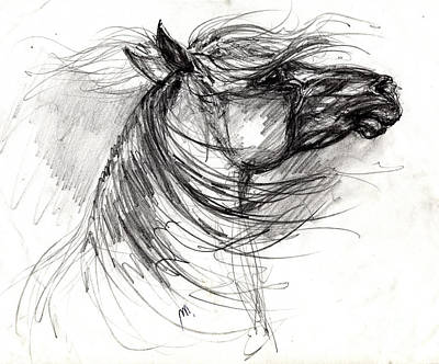 The Horse Sketch Poster by Angel  Tarantella