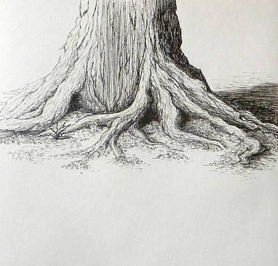 Tree Base Ink Study Poster by Rebekah Reed