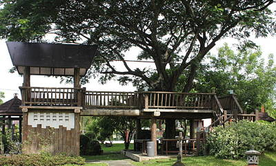 Poster featuring the photograph Tree House by Lorna Maza