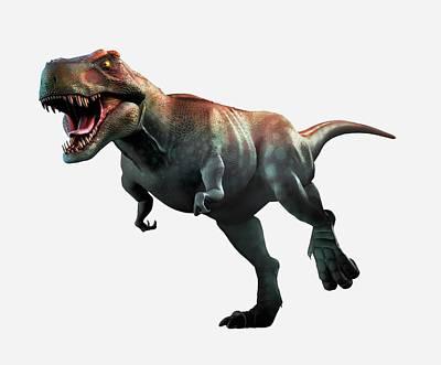 Tyrannosaurus Rex Artwork Poster