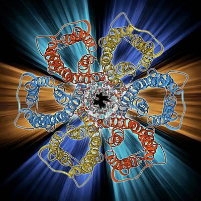 Urea Channel Molecule Poster