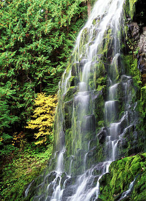 Usa, Oregon, Deschutes National Forest Poster by Stuart Westmorland