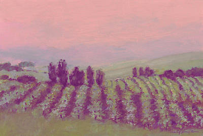 Vineyard At Dusk Poster