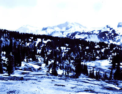 Poster featuring the photograph Vintage Mount Rainier Forest Early 1900 Era... by Eddie Eastwood