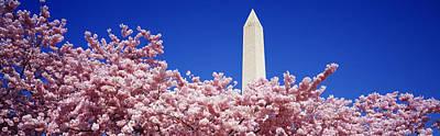 Washington Monument Washington Dc Poster