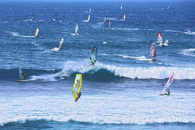 Windsurfers On Maui Poster by Diane Diederich