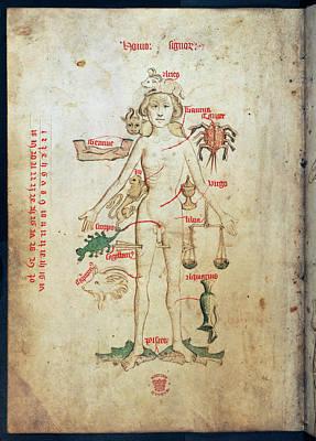 Zodiac Man Poster