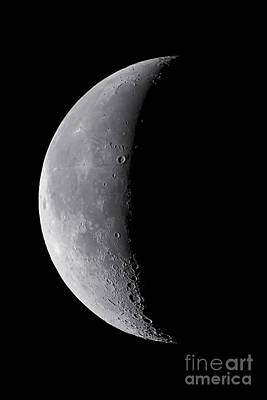 24 Day Old Waning Moon Poster by Alan Dyer