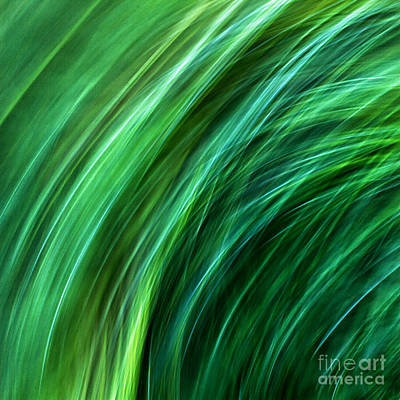 Meditations On Movement In Nature Poster
