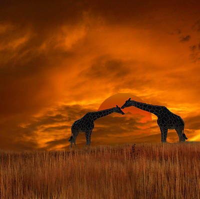 2978 Poster by Peter Holme III