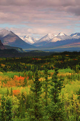 Alaska Range In Autumn, Taiga, Tundra Poster