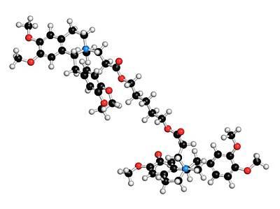 Atracurium Skeletal Muscle Relaxant Drug Poster by Molekuul