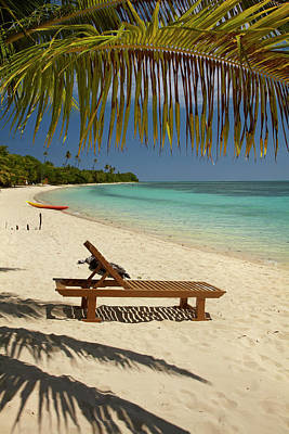 Beach, Palm Trees And Lounger Poster by David Wall