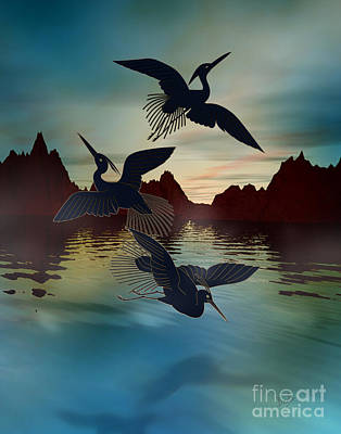 3 Black Herons At Sunset Poster