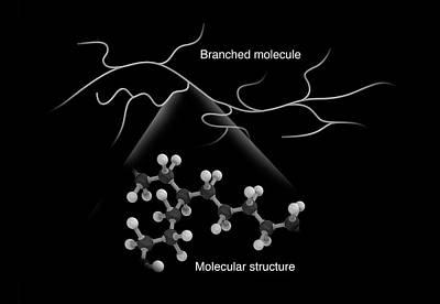 Branched Molecule Poster by Mikkel Juul Jensen