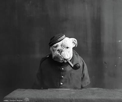 Bulldog, C1905 Poster by Granger