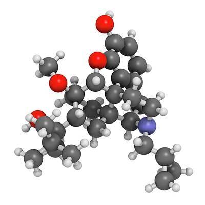 Buprenorphine Opioid Drug Molecule Poster by Molekuul