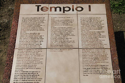 Comalcalco Archeological Ruins Poster by Ellen Thane
