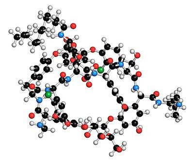 Dalbavancin Glycopeptide Antibiotic Drug Poster