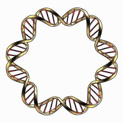 Dna (deoxyribonucleic Acid) Poster