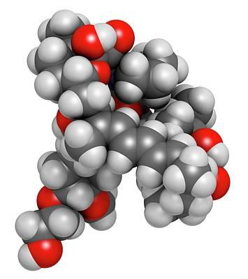 Everolimus Immunosuppressant Molecule Poster by Molekuul