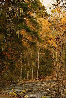 Fall At Sheep Creek Poster