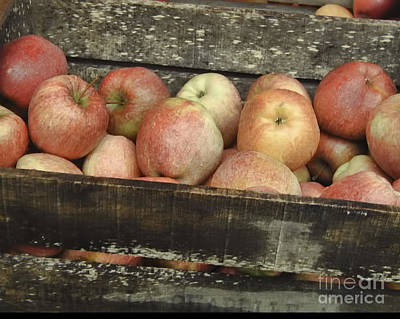 French Market Apples Poster