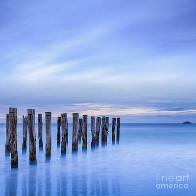 Old Jetty Pilings Dunedin New Zealand Poster by Colin and Linda McKie