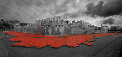 Poppies Tower Of London Collage Poster by David French